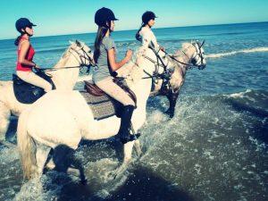 colonie equitation ado