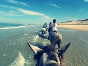Equitation ados 1