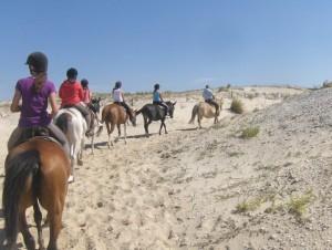 Equitation sur la plage (9)